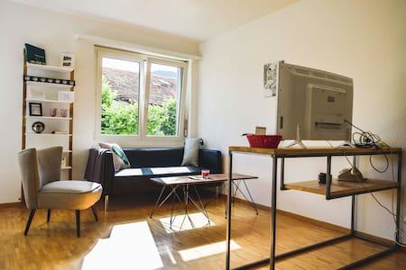 1.5 Zimmer Appartement im Zentrum von Lenzerheide