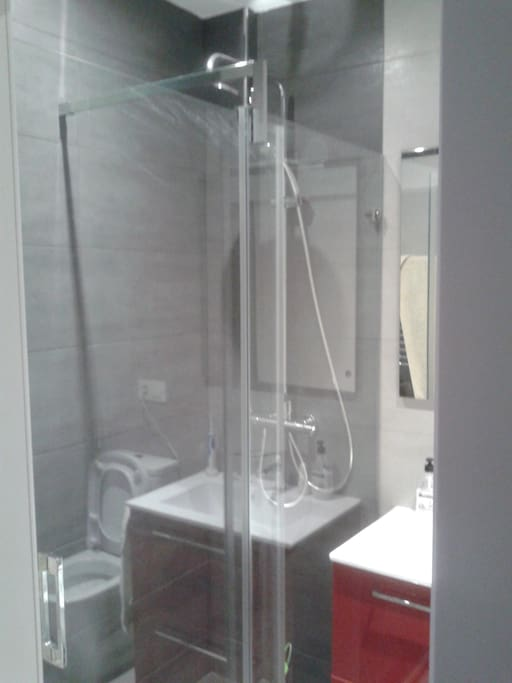 Bathroom with great shower, toilet and bidet