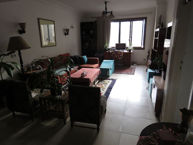 1BR apartment in Mohandessin