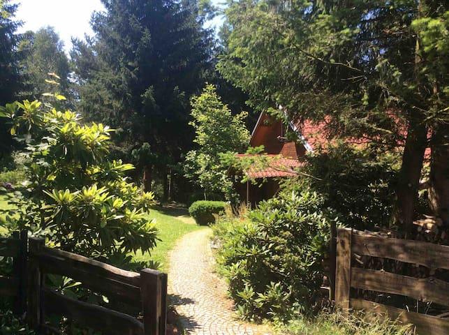 Drewniany dom na skraju lasu