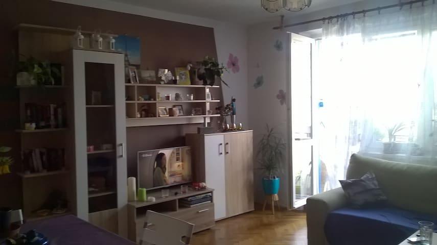 Samostatný pokoj - Hradec Králové - Lägenhet