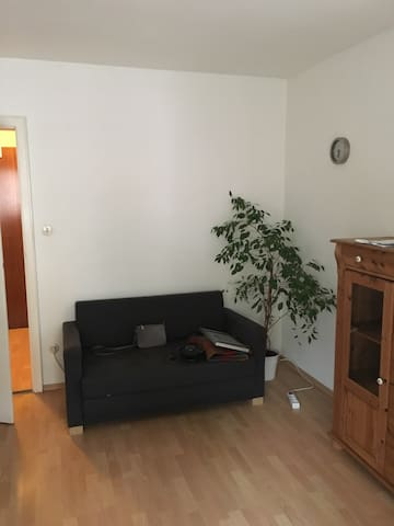 nice apartment in central Munich available April - München - Appartement