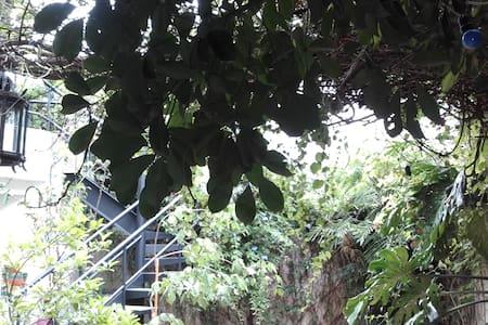 Alquilo bonita habitacion - บัวโนสไอเรส - บ้าน