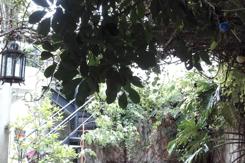 Escalera de acceso a la habitacion