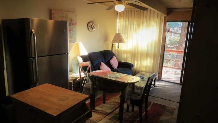 Angel Fire Resort Condo Rental Daily or Monthly