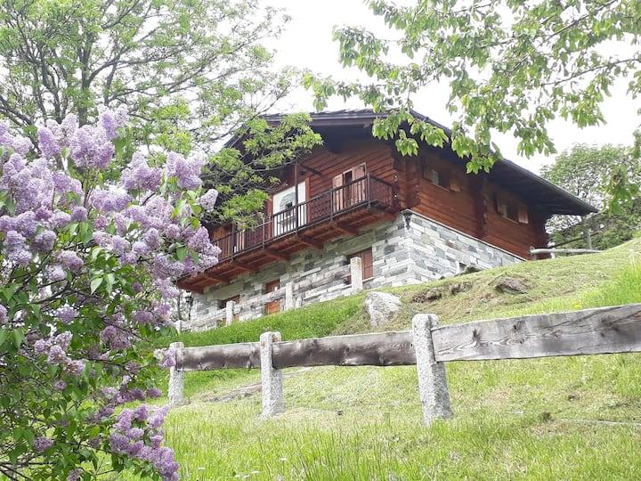 Appartamento piano terra vicino Champoluc