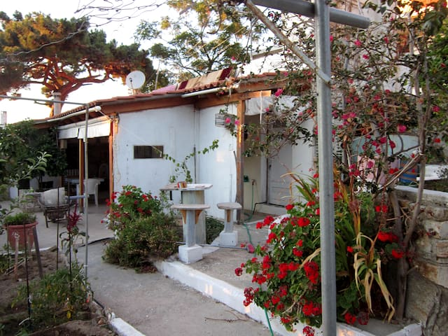 Studio apartment in Ikaria - Ikaria - Daire