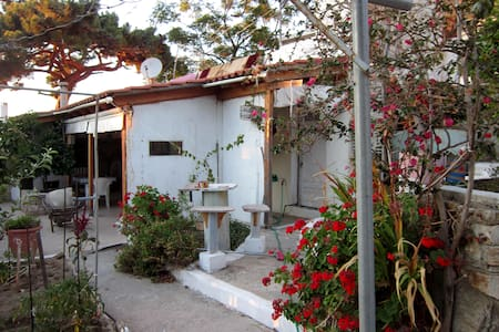 Studio apartment in Ikaria - Ikaria - Pis