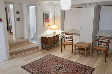 Charming studio apartment next to King's Garden - Copenhagen