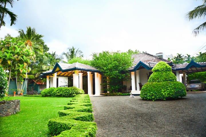 Camellia Dwelling
