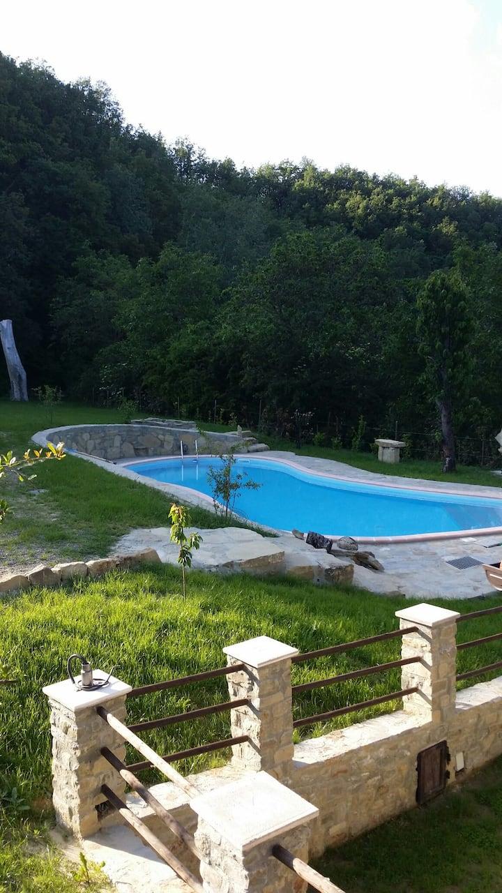 Il Ciapinet villa con piscina in mezzo alle vigne.