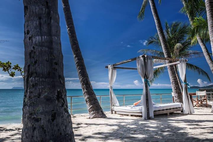 Pool Access Suite by Nikki Beach Resort & Spa