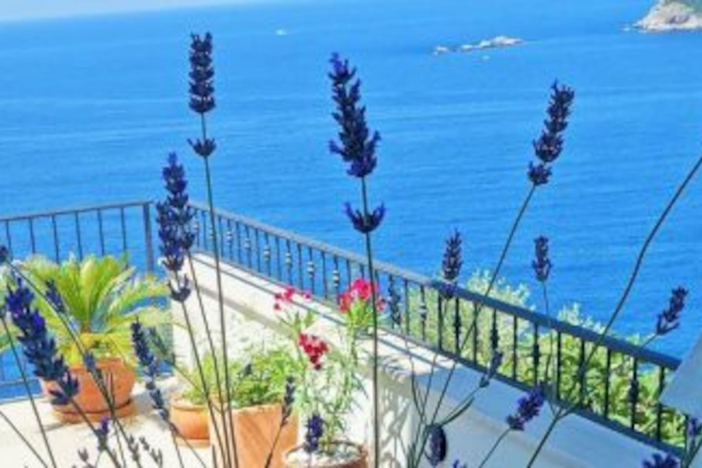 Magnificent sea view from house, terrace and young garden
