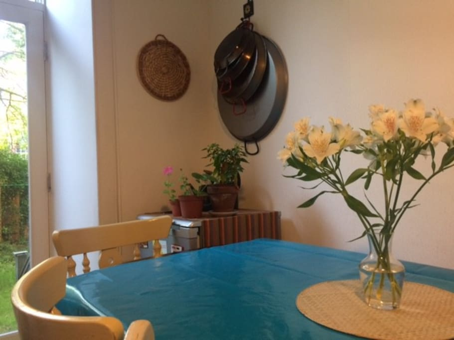 Spacious kitchen, fully equipped and with direct access to shared garden