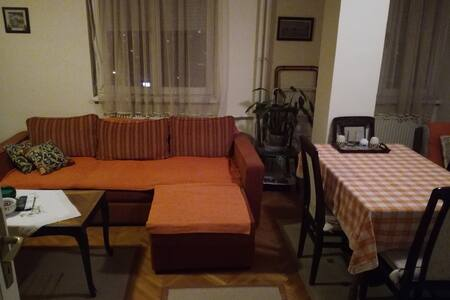 Cozy apartment near downtown Nis