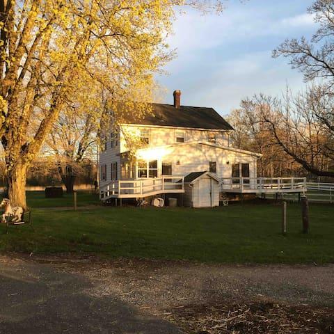 Back of The Farmhouse