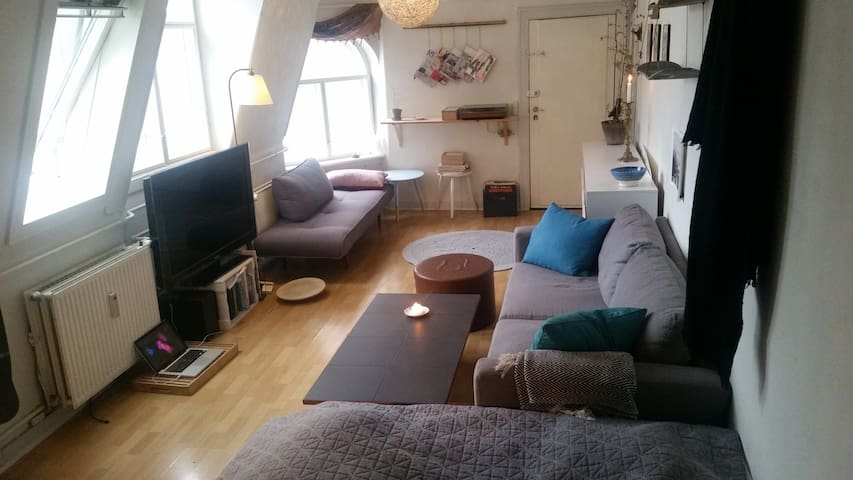 Centrum. Charming Copenhagen-apartment - Kopenhagen