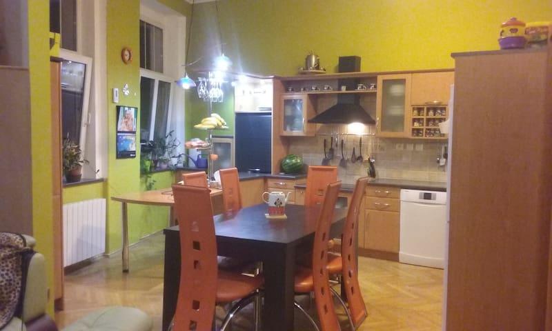 Krásný byt v klidné čtvrti blízko centra - Teplice - Wohnung