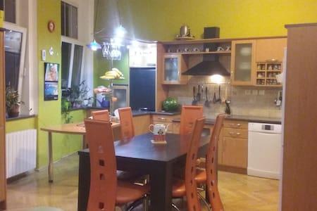 Krásný byt v klidné čtvrti blízko centra - Teplice