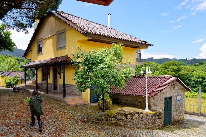 Casa do Pinheiro: Vale do Vouga