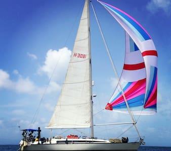 S/Y Odara by Coco Sailing - San Blas Islands