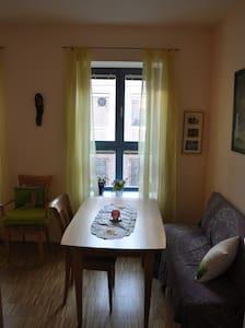 sonniges Zimmer inkl eigener Dusche - Wien - Bed & Breakfast