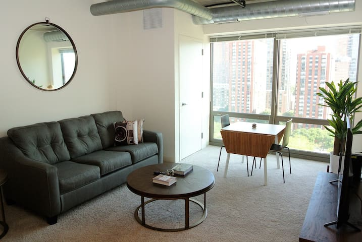 1bd/1ba - South Loop Sleek & Modern Apartment