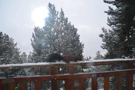 Le chalet aux écureuils - Les Angles