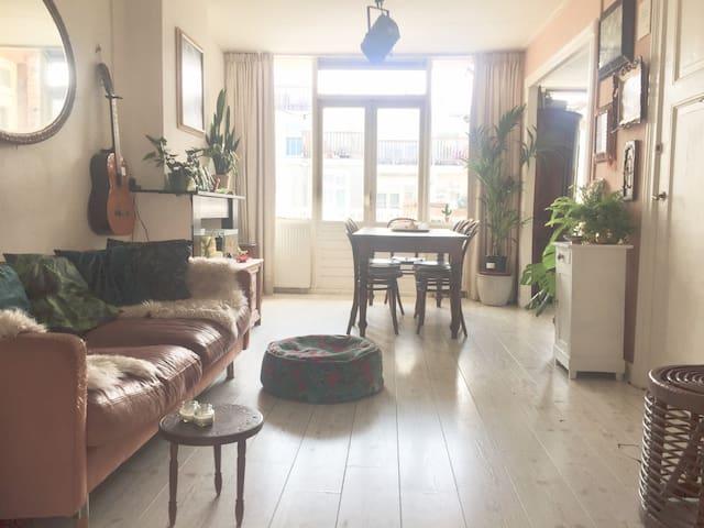 Spacious apartment near Vondelpark