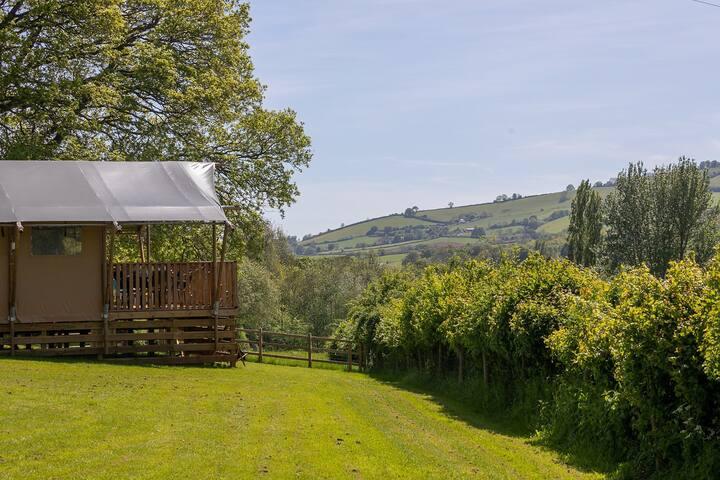 Oak Safari Tent at Valleyside Escapes, Devon