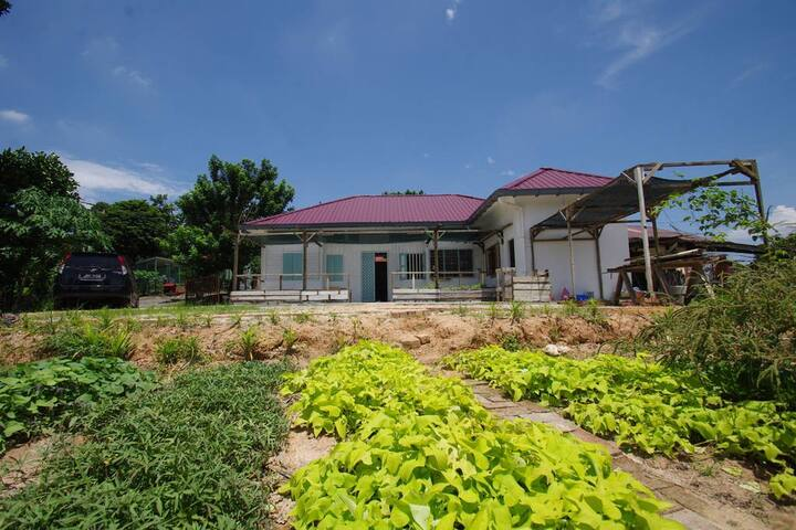 【Durian Guesthouse 流连宿】❀ Dormitory❀