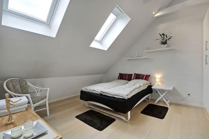 Stort værelse med plads til 2