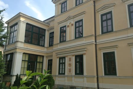Beautiful villa in the south of vienna! - Bad Vöslau - Vila