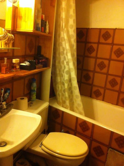 La salle de bains : un peu vieillotte et petite mais fonctionnelle et avec une baignoire pour se relaxer !