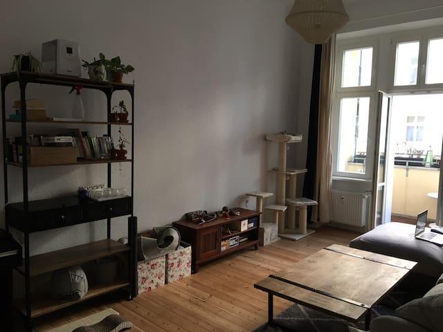Schlafzimmer, Prenzlauer Berg + zwei Katzen <3
