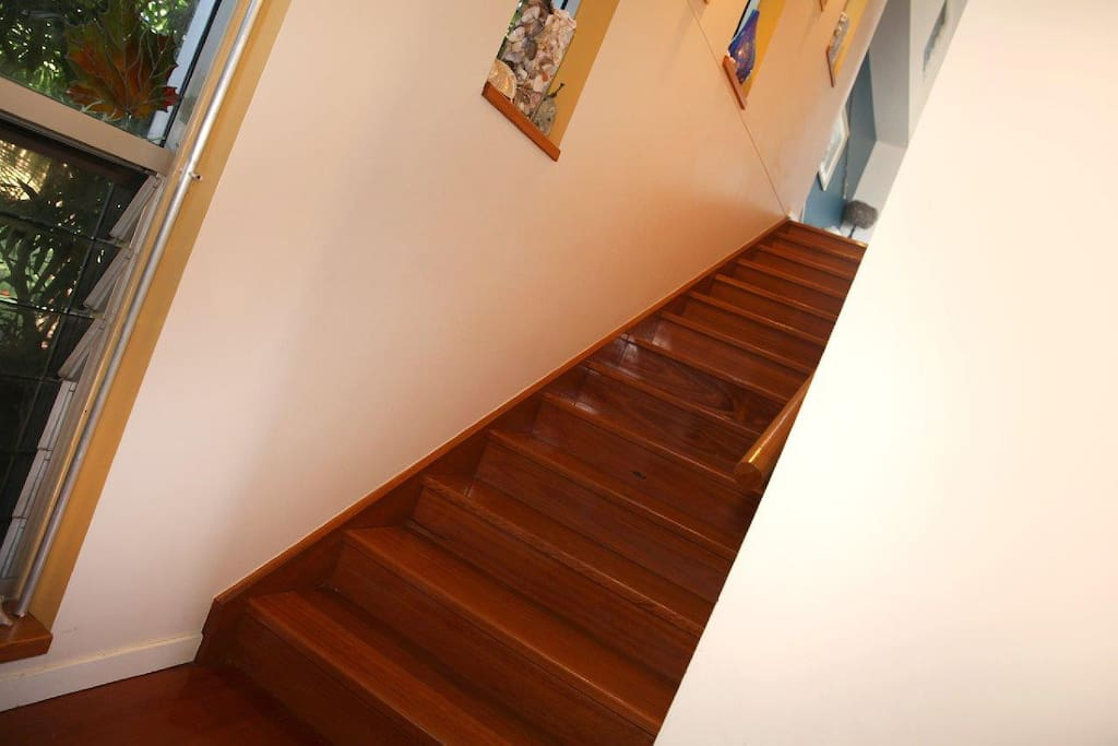 The stairway to a relaxed modern beach house