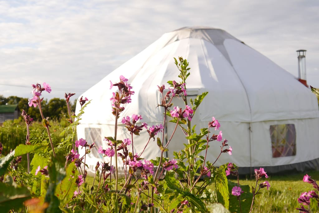 Large yurt 1 at High Nature - www.high-nature.co.uk