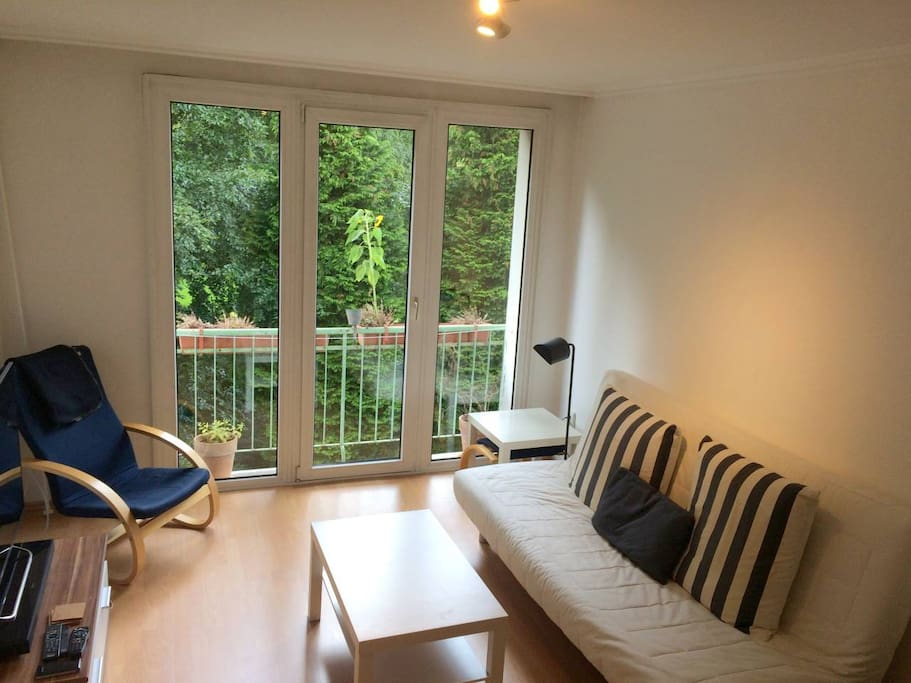 Large livingroom with sleeping sofa and a French balcony overlooking the garden