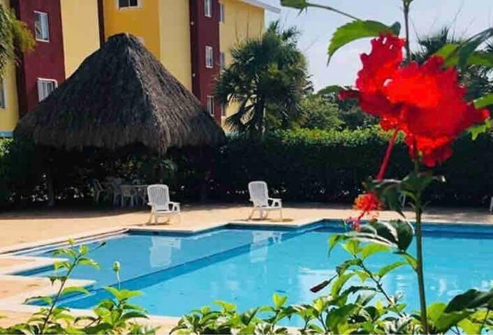 FL Premium Hospitality suite 1
