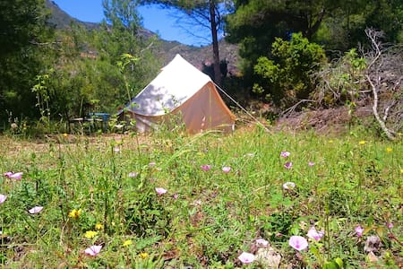 Bell Tent in Nature - Lentegí