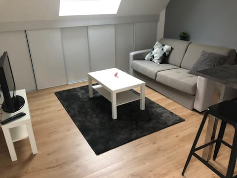 Très beau studio en duplex dans parc arboré
