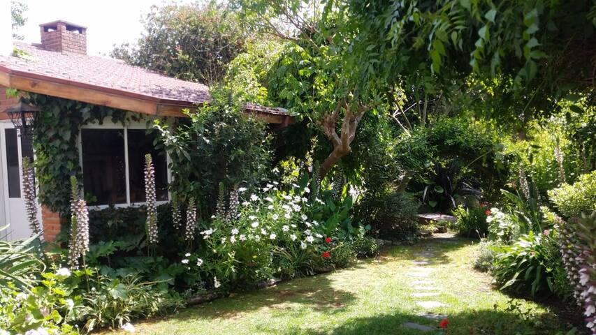 Casa Punta Mogotes con jardín, arroyo y quincho!
