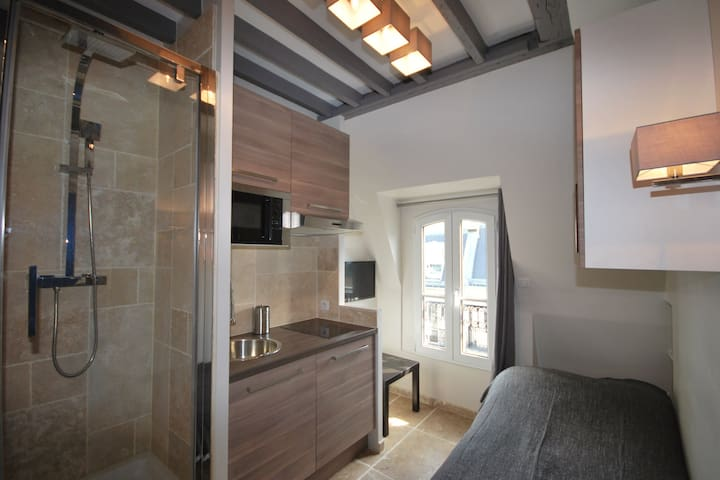 FUNCTIONAL APARTMENT - SAINT GERMAIN DES PRÉS