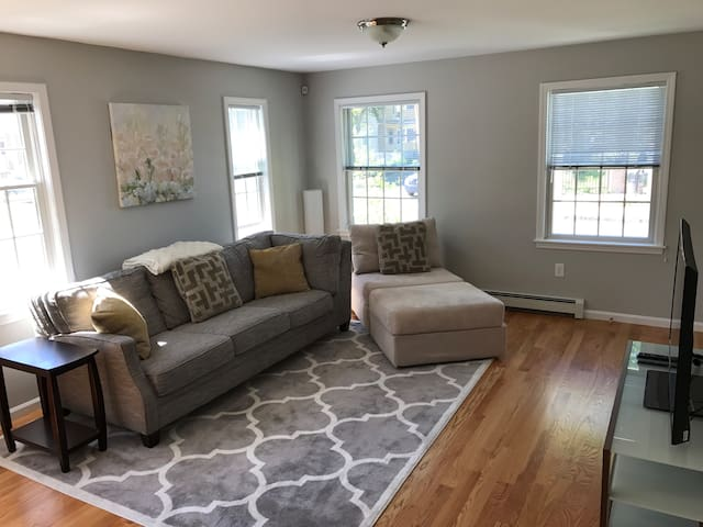 Sunny Boston Apartment