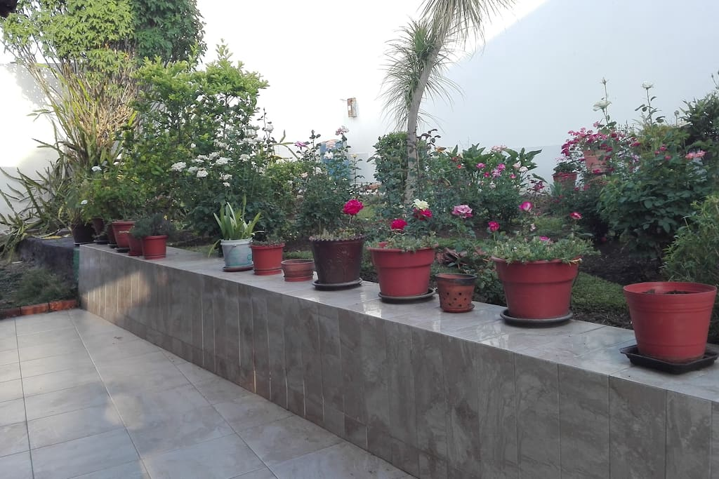 Amplios espacios de jardínes