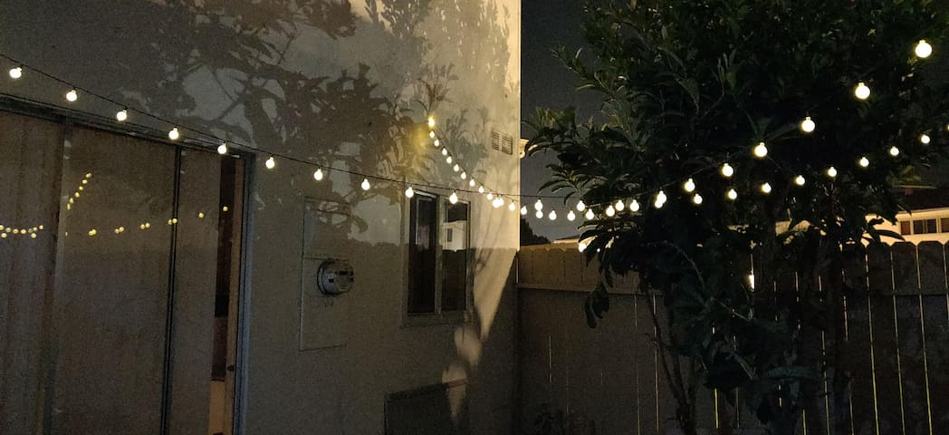 Back Yard At Night