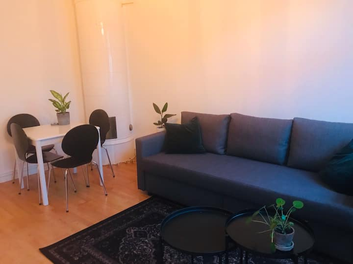 Cozy apartment in central Lund