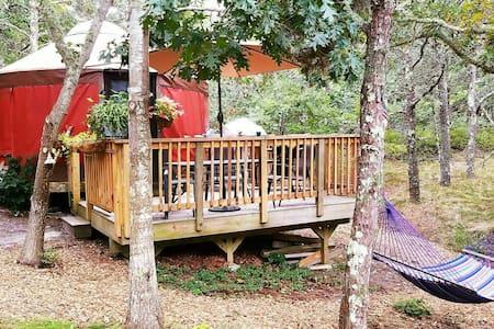 Yurt Camping ON CAPE COD - Truro