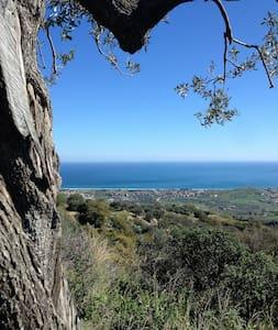 Il giardino di Rocco - Badolato - Villa
