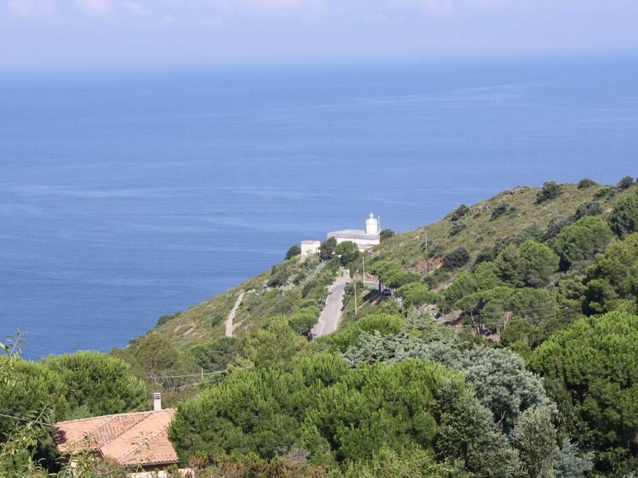 vista dal giardino di casa Mary - il Faro di punta Polveraia-  32/5000 View from the garden of Casa Mary - the lighthouse of Punta Polveraia
